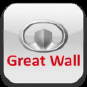 Камеры Great Wall