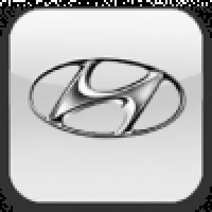 Камеры Hyundai