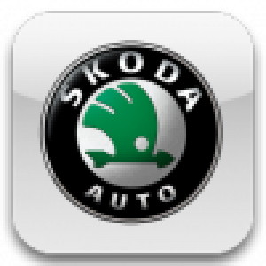 Камеры Skoda